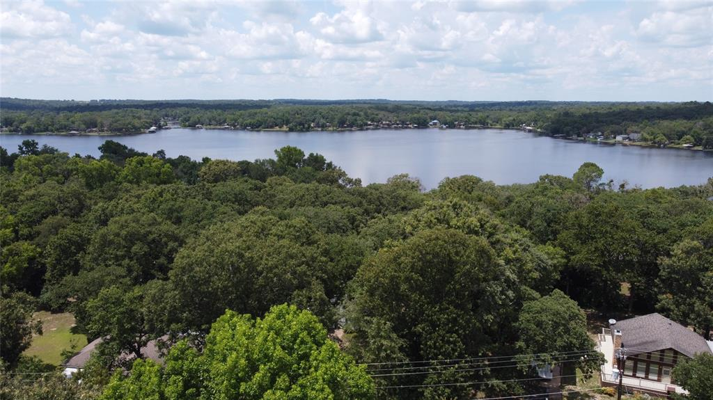 336 Long Shadow  Drive, Murchison, Texas 75778 - acquisto real estate best real estate follow up system katy mcgillen