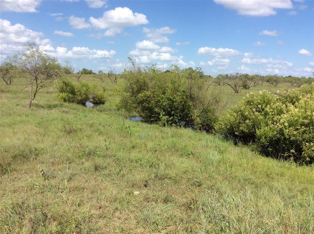 2875 CR 505  Hamilton, Texas 76531 - acquisto real estate best listing agent in the nation shana acquisto estate realtor
