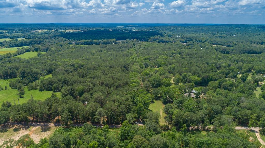 544 County Road 3202  Jacksonville, Texas 75766 - acquisto real estate best the colony realtor linda miller the bridges real estate