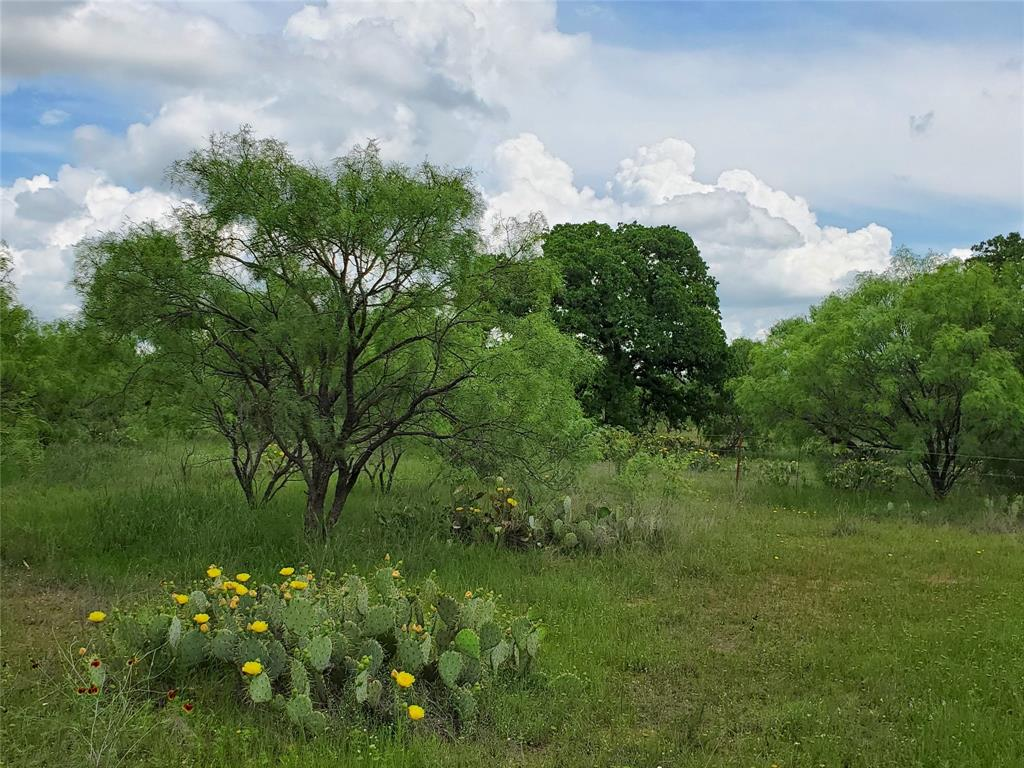 6153 Farm To Market Road 502  Rochelle, Texas 76871 - acquisto real estate nicest realtor in america shana acquisto