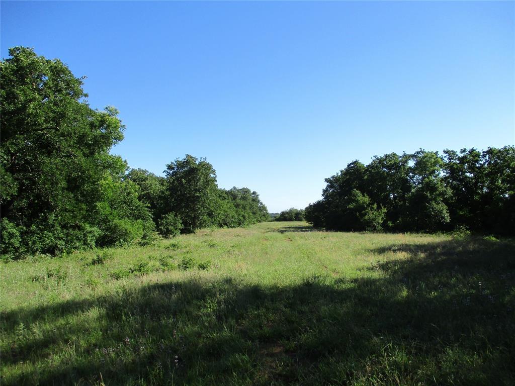 72 AC old Joy Shannon  Bluegrove, Texas 76352 - Acquisto Real Estate best frisco realtor Amy Gasperini 1031 exchange expert
