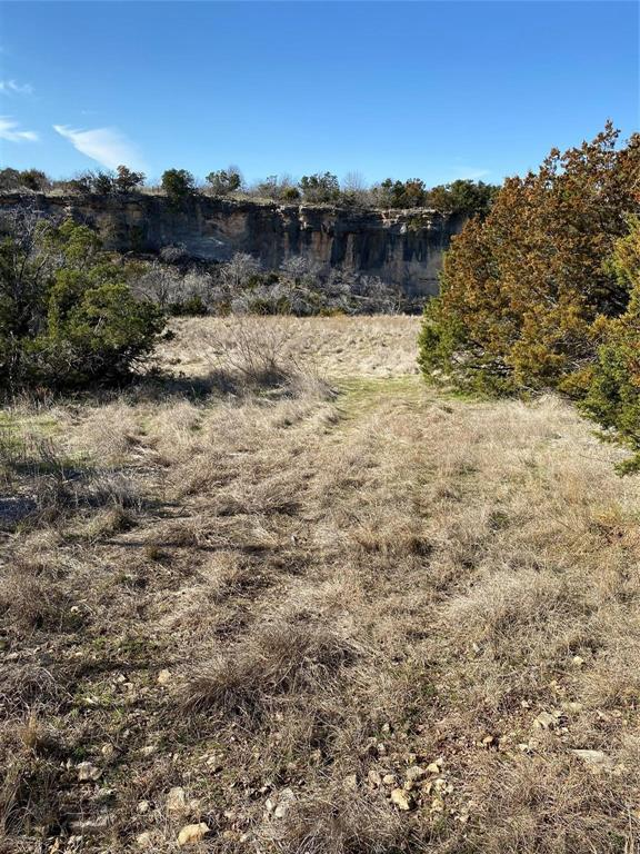 2040 Bluff Creek  Drive, Strawn, Texas 76475 - acquisto real estate best the colony realtor linda miller the bridges real estate