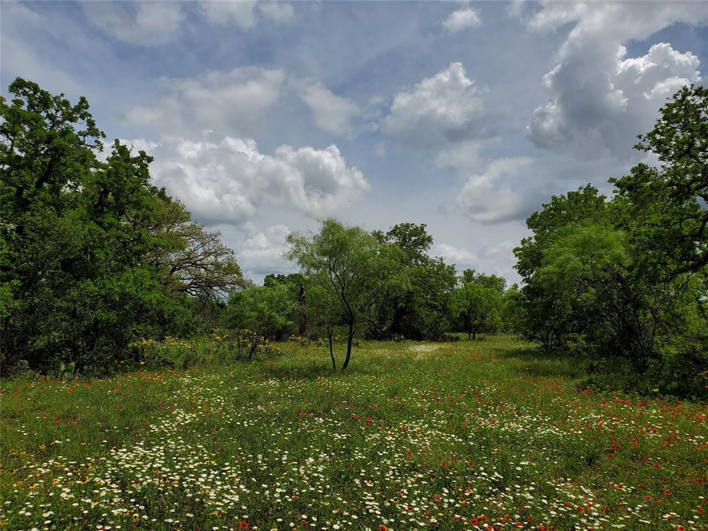 6153 Farm To Market Road 502  Rochelle, Texas 76871 - acquisto real estate best listing photos hannah ewing mckinney real estate expert