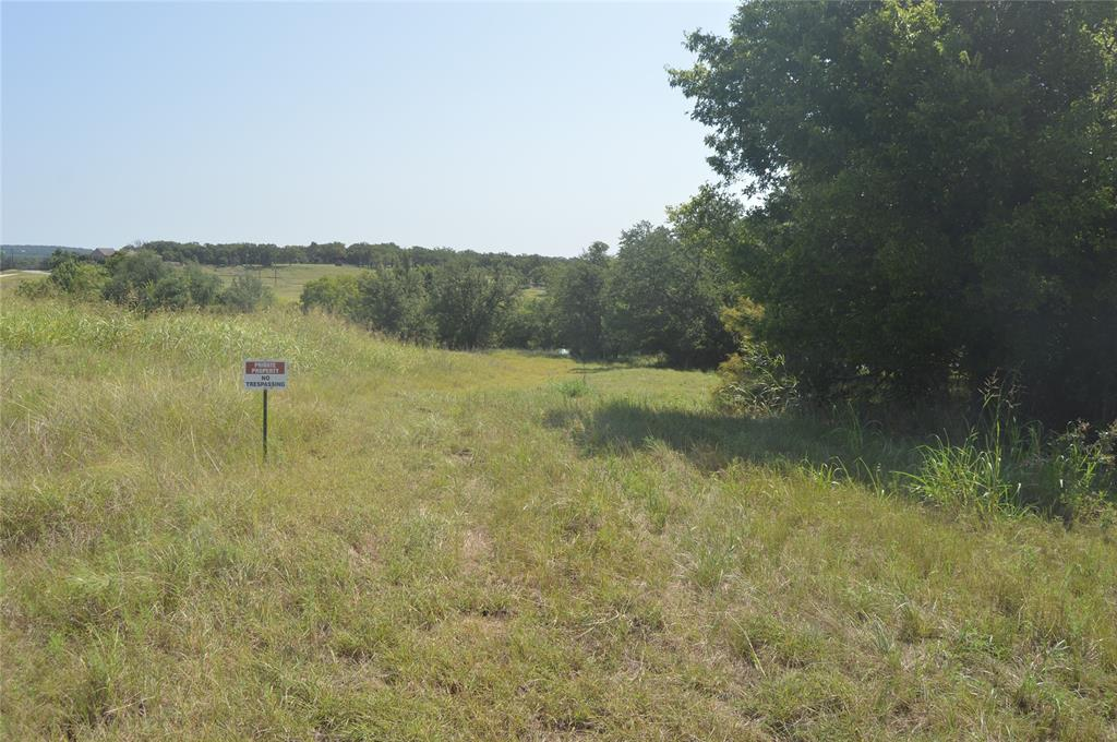 Lot 25 Goldfinch  Lane, Weatherford, Texas 76088 - Acquisto Real Estate best frisco realtor Amy Gasperini 1031 exchange expert