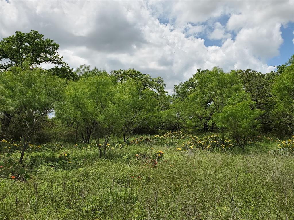 6153 Farm To Market Road 502  Rochelle, Texas 76871 - acquisto real estate best frisco real estate agent amy gasperini panther creek realtor