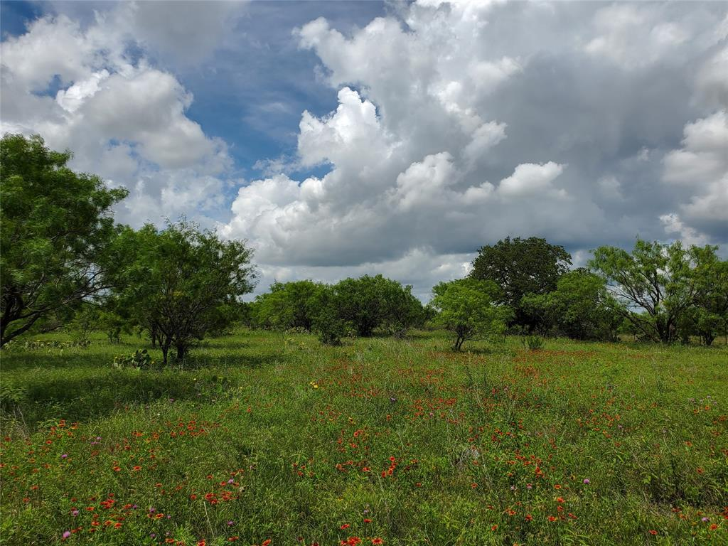 6153 Farm To Market Road 502  Rochelle, Texas 76871 - acquisto real estate best luxury home specialist shana acquisto
