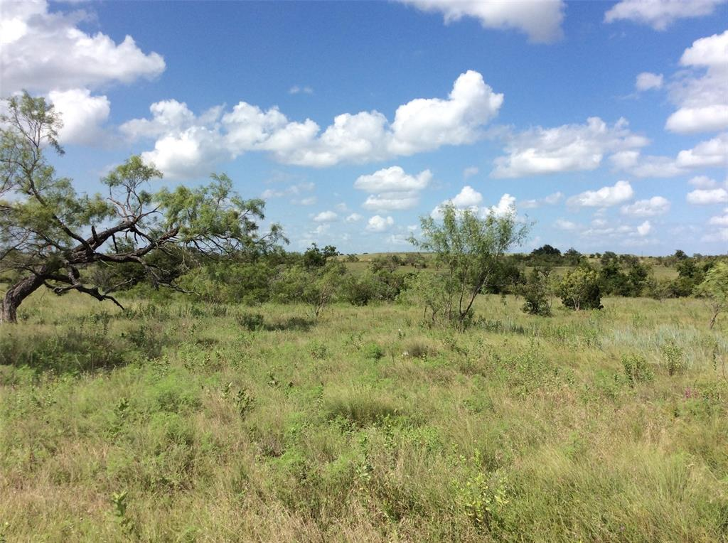 2875 CR 505  Hamilton, Texas 76531 - acquisto real estate best investor home specialist mike shepherd relocation expert