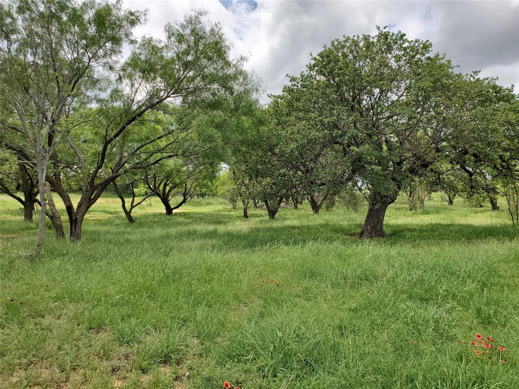 6153 Farm To Market Road 502  Rochelle, Texas 76871 - acquisto real estate best new home sales realtor linda miller executor real estate