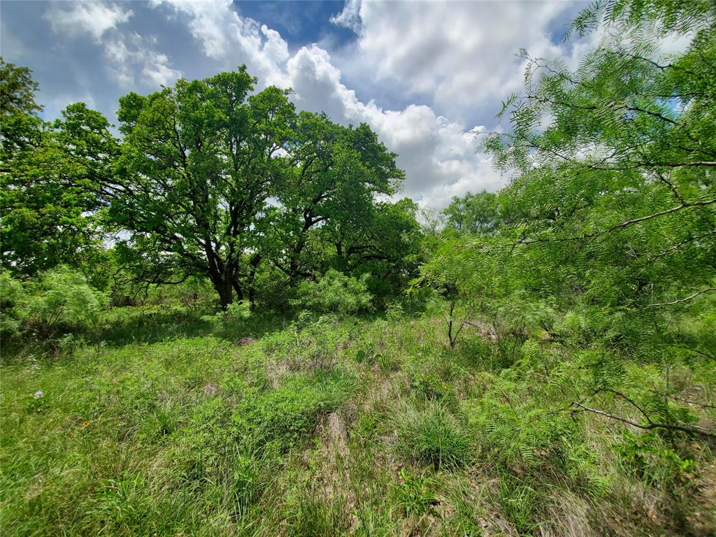 6153 Farm To Market Road 502  Rochelle, Texas 76871 - acquisto real estate best style realtor kim miller best real estate reviews dfw