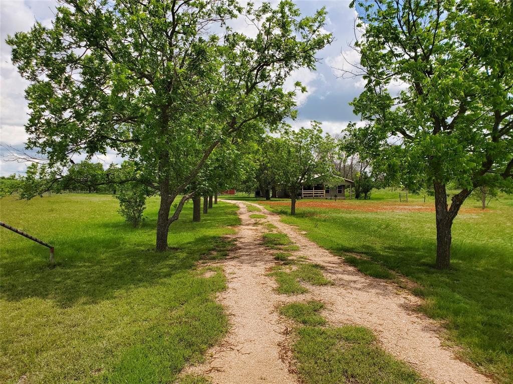6153 Farm To Market Road 502  Rochelle, Texas 76871 - acquisto real estate best listing agent in the nation shana acquisto estate realtor