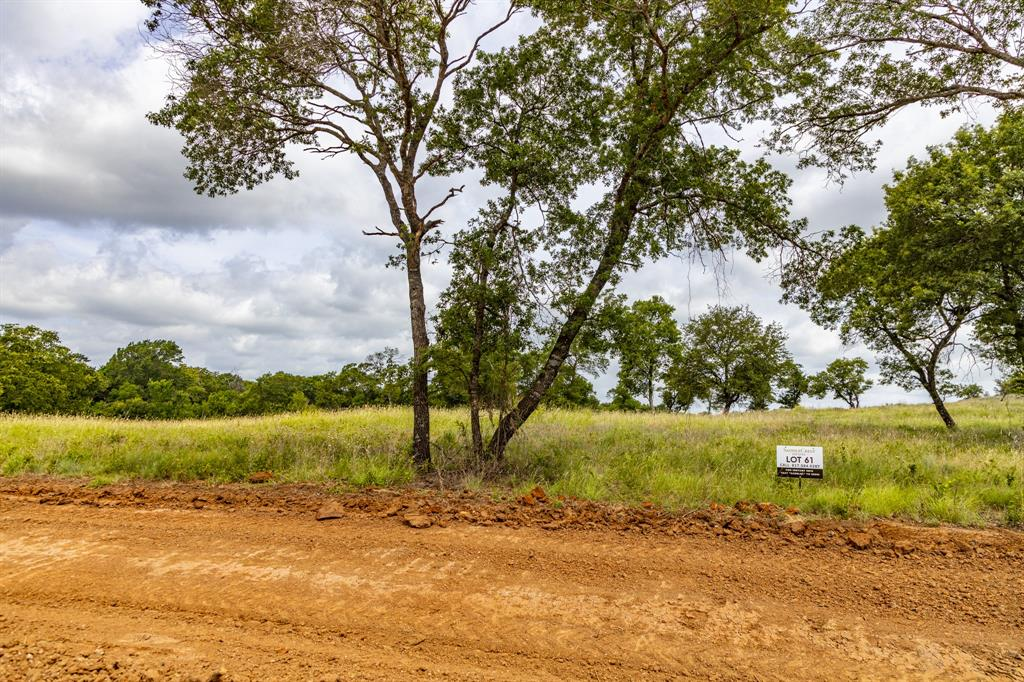 511 Old Agnes  Road, Weatherford, Texas 76088 - acquisto real estate best prosper realtor susan cancemi windfarms realtor