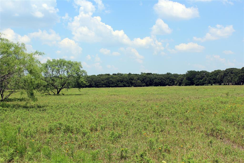 TBD HWY. 171  Coolidge, Texas 76635 - Acquisto Real Estate best frisco realtor Amy Gasperini 1031 exchange expert
