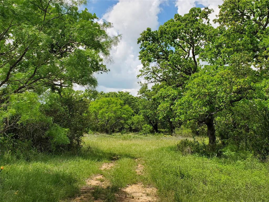 6153 Farm To Market Road 502  Rochelle, Texas 76871 - acquisto real estaet best boutique real estate firm in texas for high net worth sellers