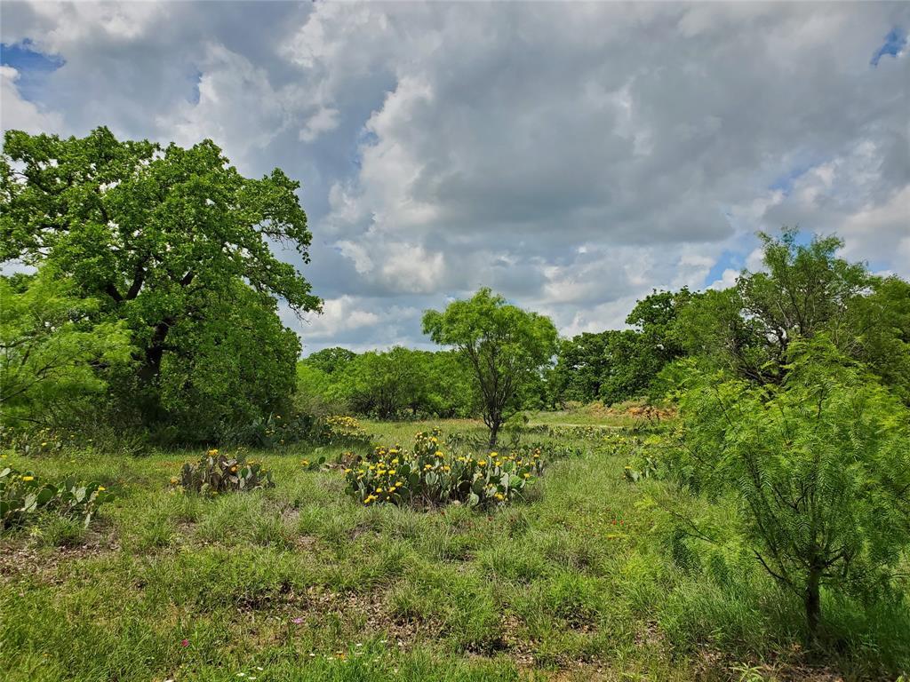 6153 Farm To Market Road 502  Rochelle, Texas 76871 - acquisto real estate best negotiating realtor linda miller declutter realtor