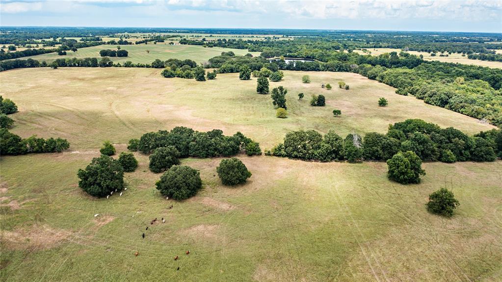 0000 CR 14555  Pattonville, Texas 75468 - Acquisto Real Estate best frisco realtor Amy Gasperini 1031 exchange expert