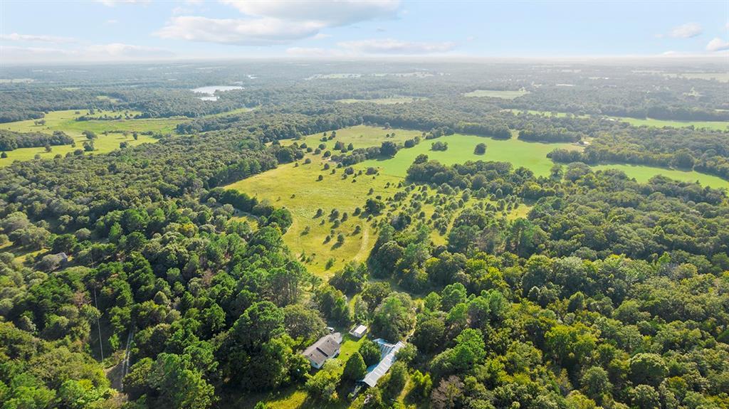 6000 Snooks  Drive, Murchison, Texas 75778 - Acquisto Real Estate best frisco realtor Amy Gasperini 1031 exchange expert