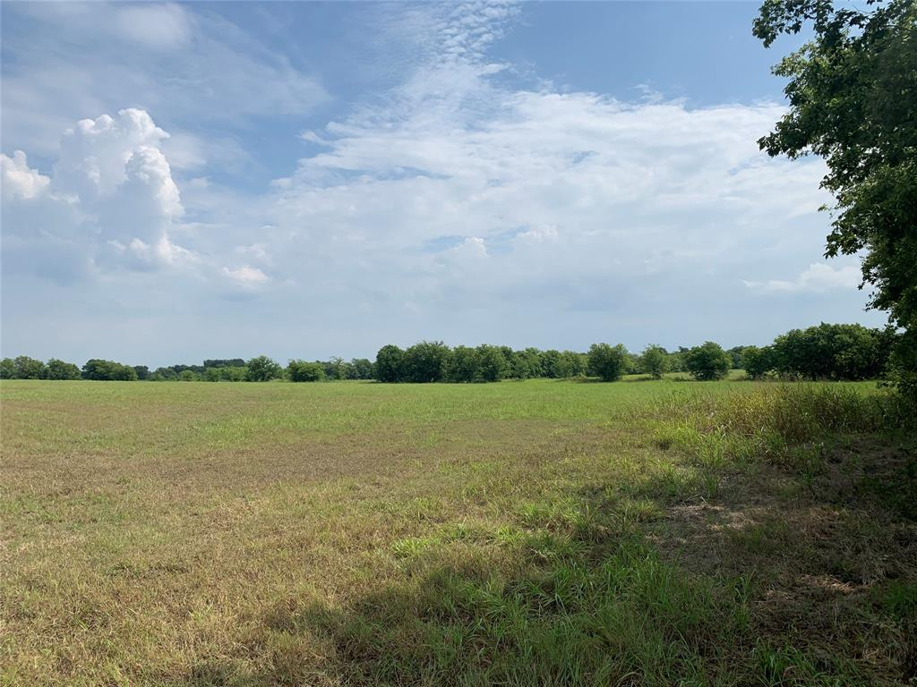 001 County Rd 4045 Off Of  Ector, Texas 75439 - Acquisto Real Estate best frisco realtor Amy Gasperini 1031 exchange expert