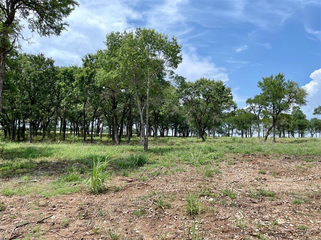Lot 86 Greene  Road, Weatherford, Texas 76087 - Acquisto Real Estate best frisco realtor Amy Gasperini 1031 exchange expert