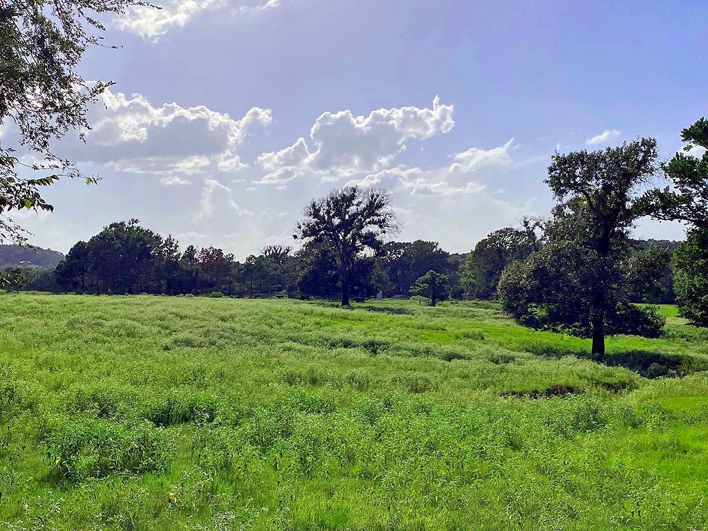 TBD County Road 4325  Larue, Texas 75770 - Acquisto Real Estate best frisco realtor Amy Gasperini 1031 exchange expert