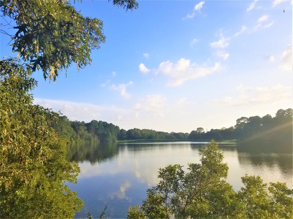 Safari  Bluff, Larue, Texas 75770 - Acquisto Real Estate best frisco realtor Amy Gasperini 1031 exchange expert