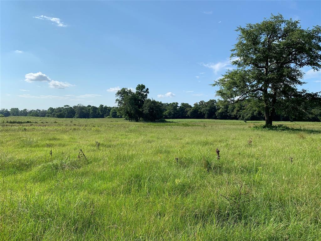 Tract 3 VZ County Road 4112  Canton, Texas 75103 - Acquisto Real Estate best frisco realtor Amy Gasperini 1031 exchange expert