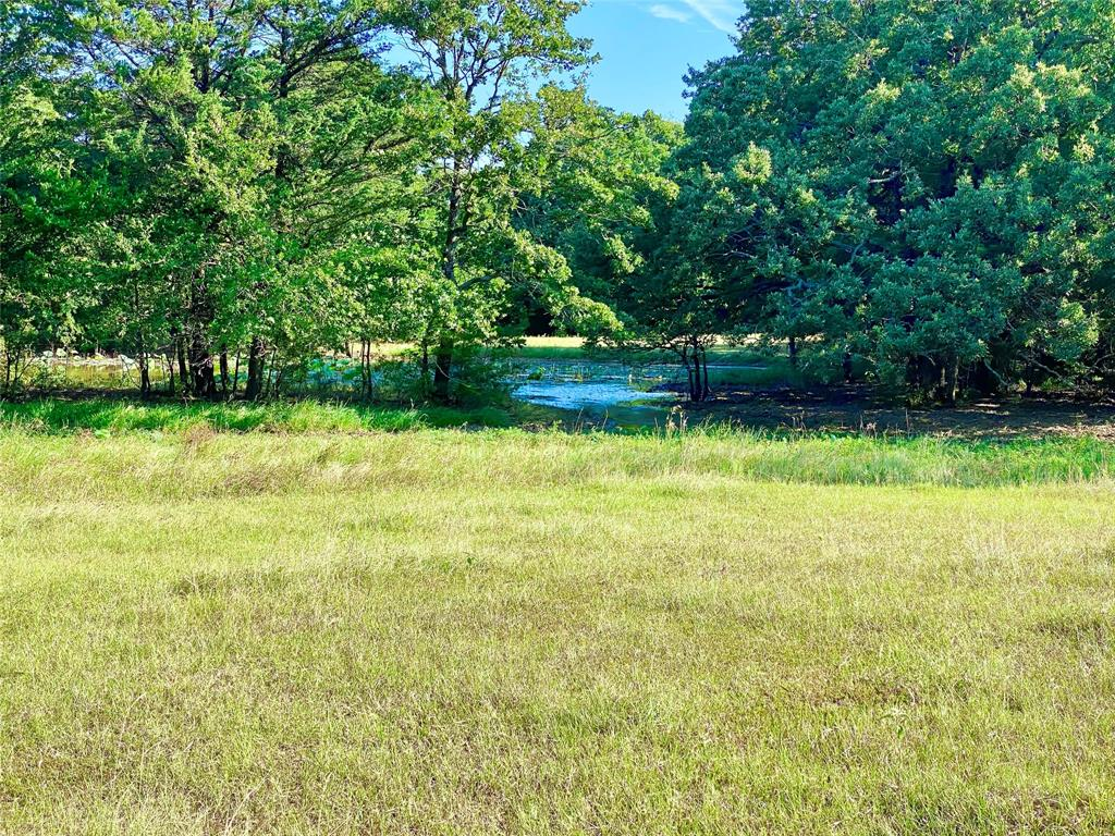 TBD 29a County Rd 2265  Lamasco, Texas 75488 - Acquisto Real Estate best frisco realtor Amy Gasperini 1031 exchange expert