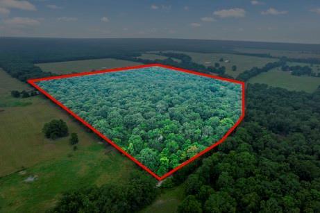 TBD County road 4615  Bogata, Texas 75417 - Acquisto Real Estate best frisco realtor Amy Gasperini 1031 exchange expert