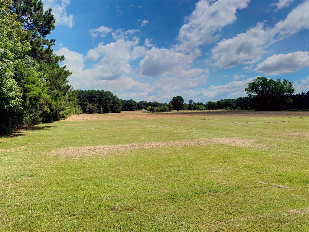 TBD Waldron Ferry  Road, Hallsville, Texas 75650 - Acquisto Real Estate best frisco realtor Amy Gasperini 1031 exchange expert