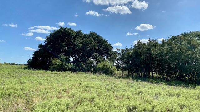 45 County Road 132  Mullin, Texas 76864 - Acquisto Real Estate best frisco realtor Amy Gasperini 1031 exchange expert