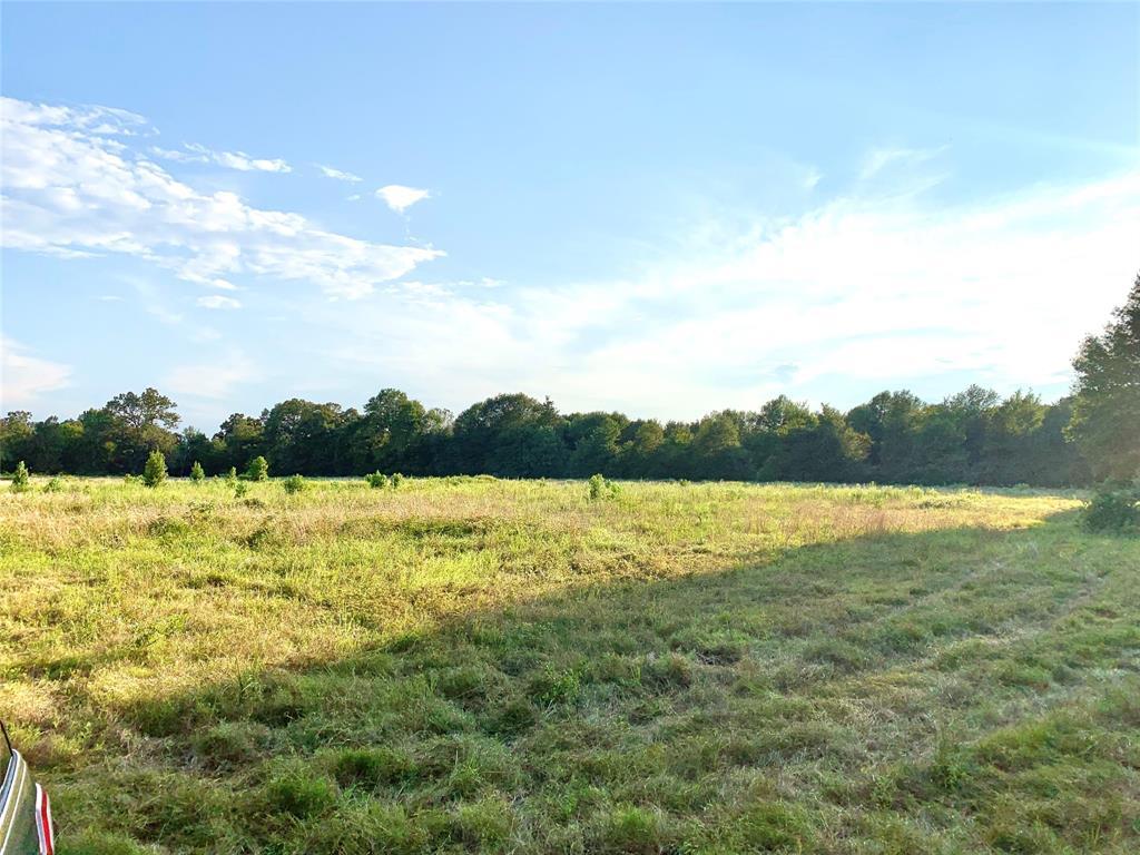 000 Farm Road 3298  Powderly, Texas 75473 - Acquisto Real Estate best frisco realtor Amy Gasperini 1031 exchange expert