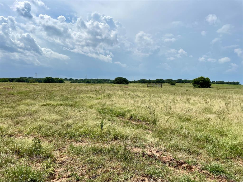Lot 82 Hopsing  Court, Weatherford, Texas 76087 - Acquisto Real Estate best frisco realtor Amy Gasperini 1031 exchange expert