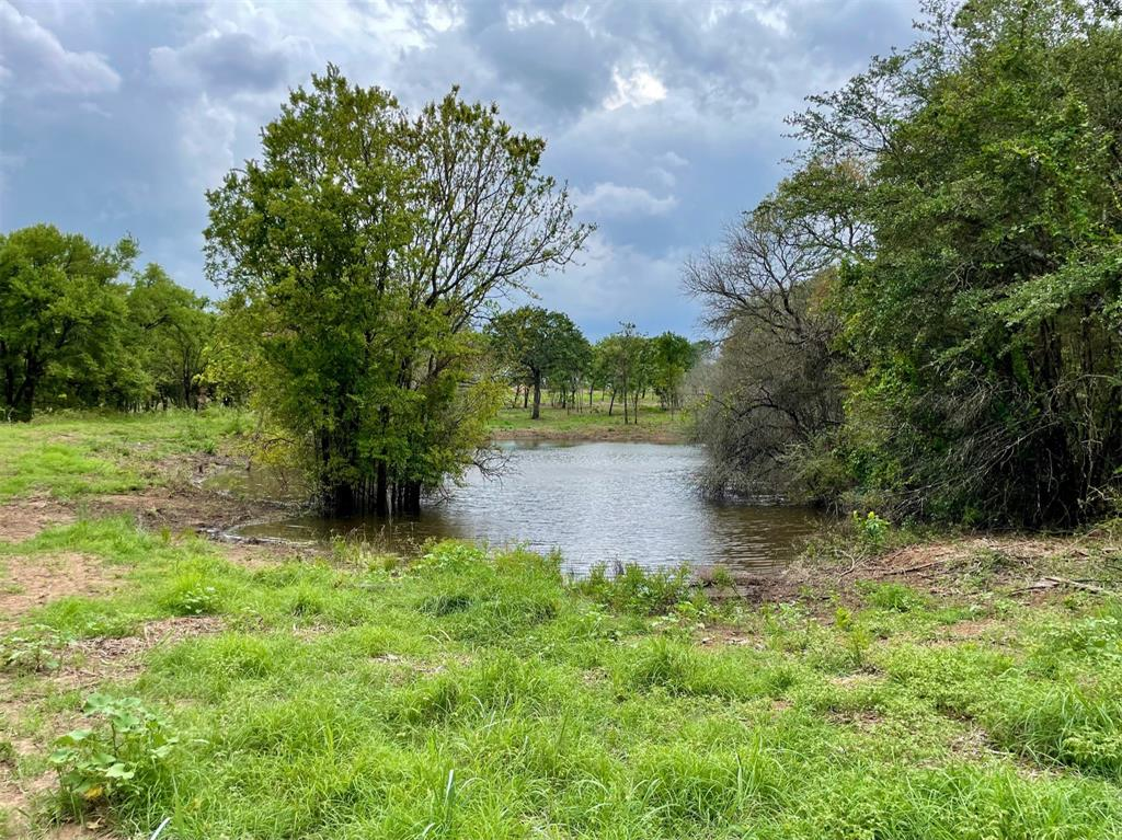 Lot 48 Greene  Road, Weatherford, Texas 76087 - Acquisto Real Estate best frisco realtor Amy Gasperini 1031 exchange expert