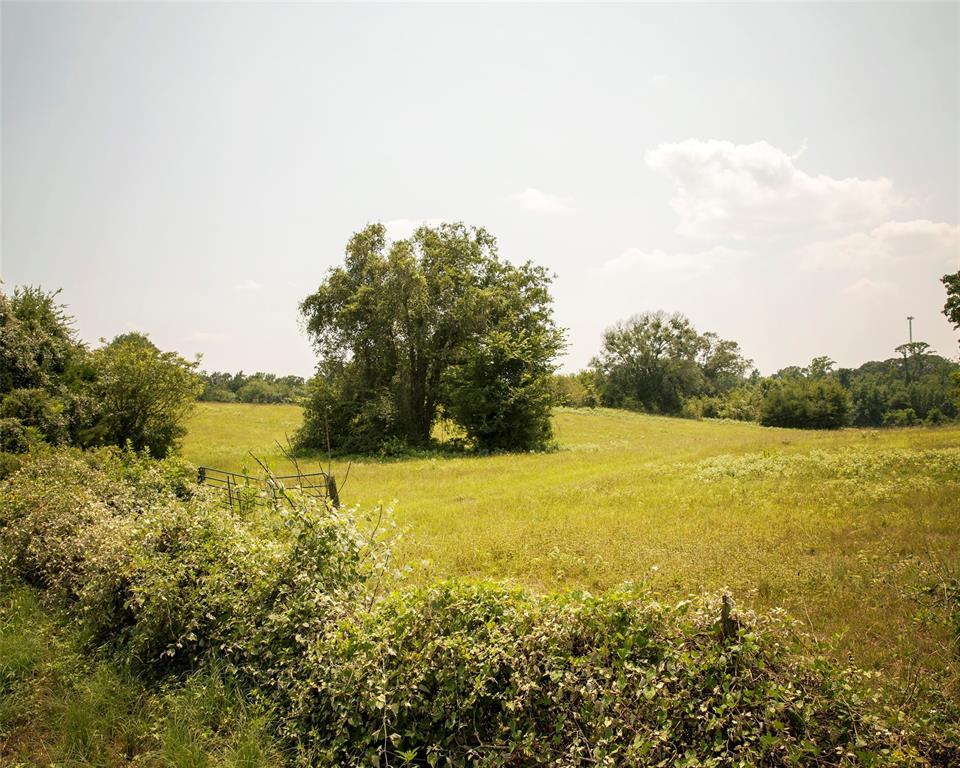 11184 County Road 4344  Larue, Texas 75782 - Acquisto Real Estate best frisco realtor Amy Gasperini 1031 exchange expert