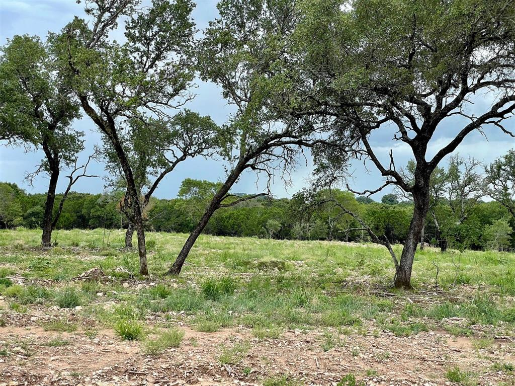 Lot 55 Greene  Road, Weatherford, Texas 76087 - Acquisto Real Estate best frisco realtor Amy Gasperini 1031 exchange expert