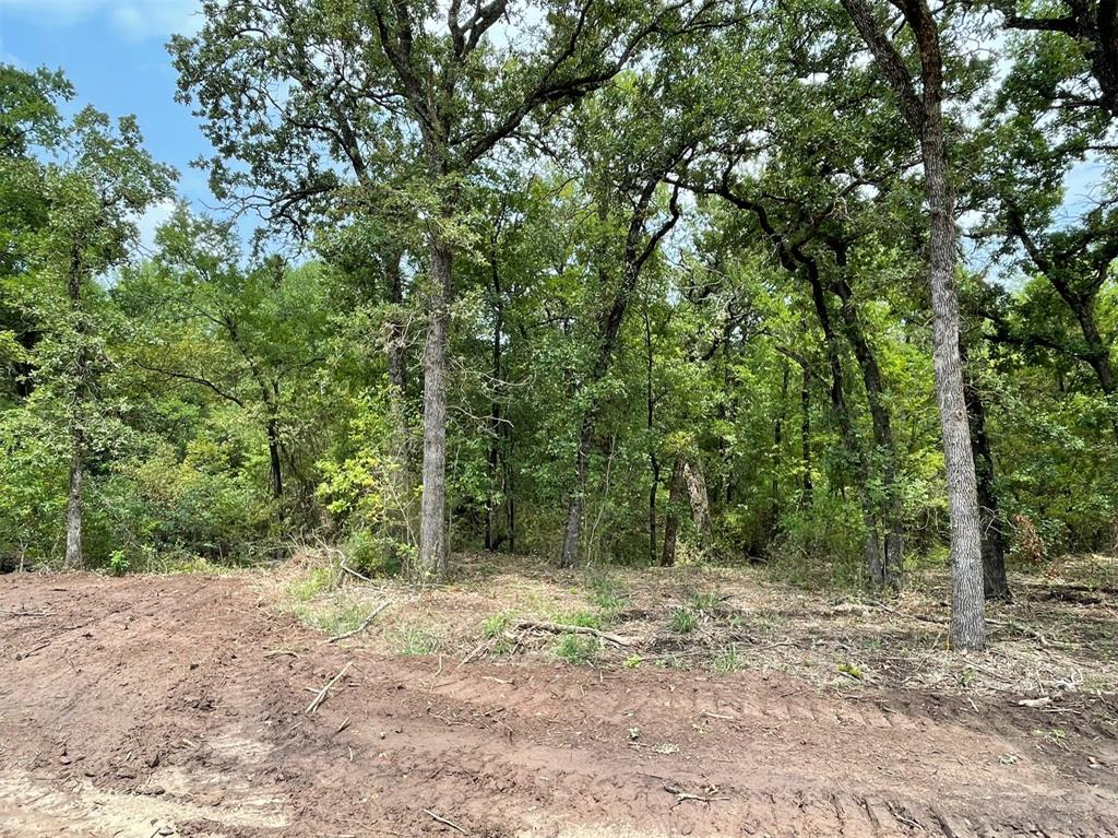 Lot 27 Roy Coffee  Court, Weatherford, Texas 76087 - Acquisto Real Estate best frisco realtor Amy Gasperini 1031 exchange expert