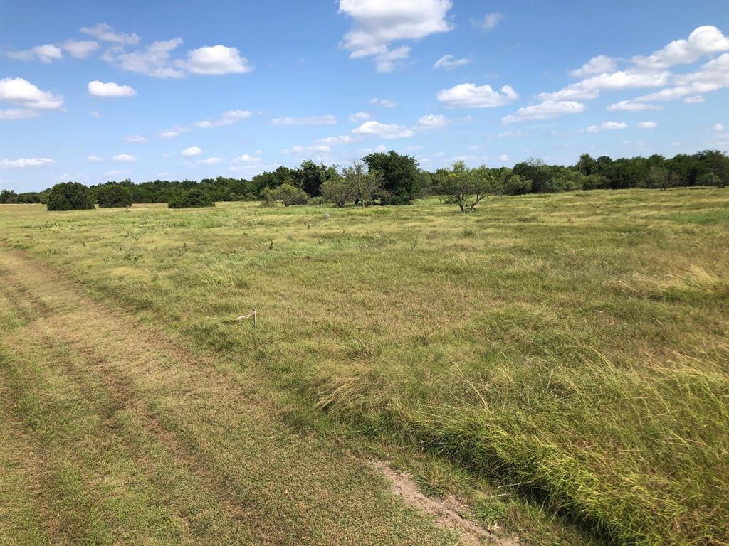 1012 White Bluff  Drive, Whitney, Texas 76692 - Acquisto Real Estate best frisco realtor Amy Gasperini 1031 exchange expert