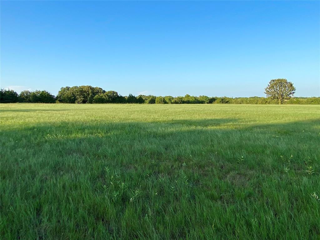 1134 County Road 3513  Dike, Texas 75437 - Acquisto Real Estate best frisco realtor Amy Gasperini 1031 exchange expert