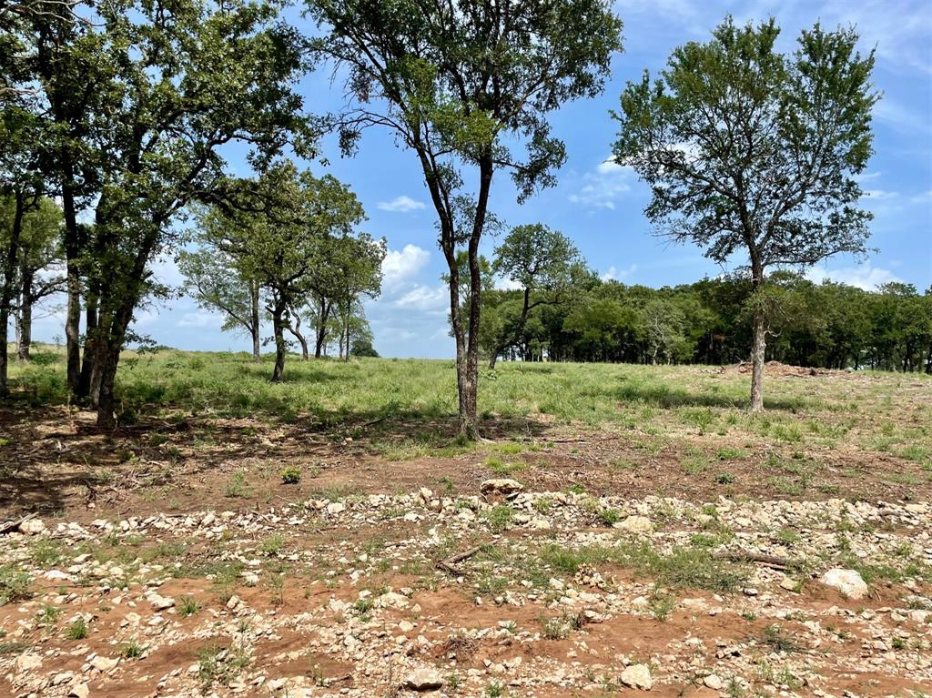 Lot 88 Greene  Road, Weatherford, Texas 76087 - Acquisto Real Estate best frisco realtor Amy Gasperini 1031 exchange expert