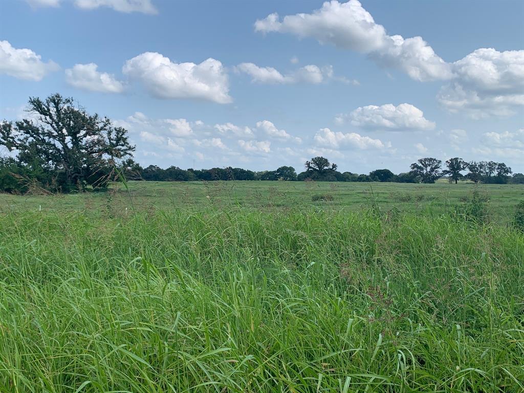 TBD Farm Road 269- Tract G  Saltillo, Texas 75478 - Acquisto Real Estate best frisco realtor Amy Gasperini 1031 exchange expert
