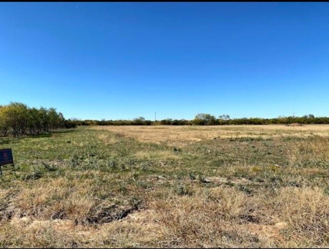 Lot 4 Eagle Cove  Eula, Texas 79510 - Acquisto Real Estate best frisco realtor Amy Gasperini 1031 exchange expert