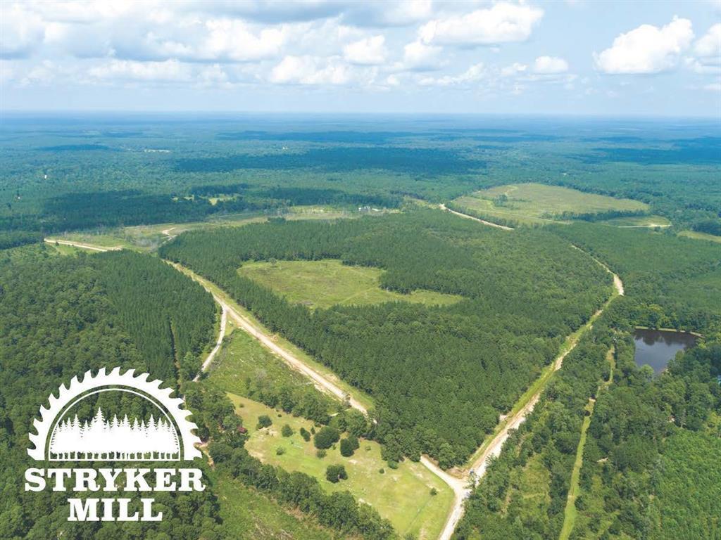 000000 Purvis  Boulevard, Corrigan, Texas 75939 - Acquisto Real Estate best frisco realtor Amy Gasperini 1031 exchange expert