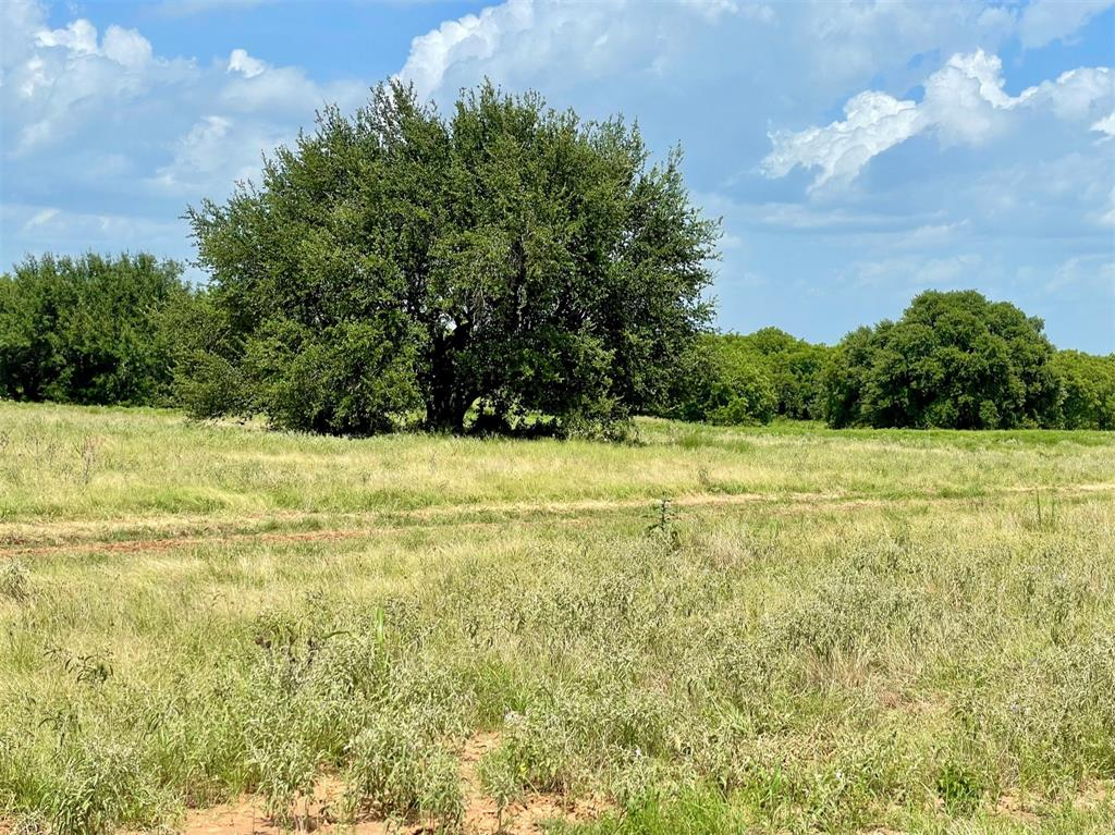Lot 81 Hopsing  Court, Weatherford, Texas 76087 - Acquisto Real Estate best frisco realtor Amy Gasperini 1031 exchange expert