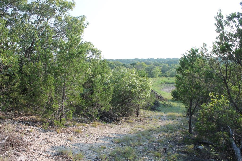 9952 Hwy 67 Tract 5-1  Glen Rose, Texas 76690 - Acquisto Real Estate best frisco realtor Amy Gasperini 1031 exchange expert