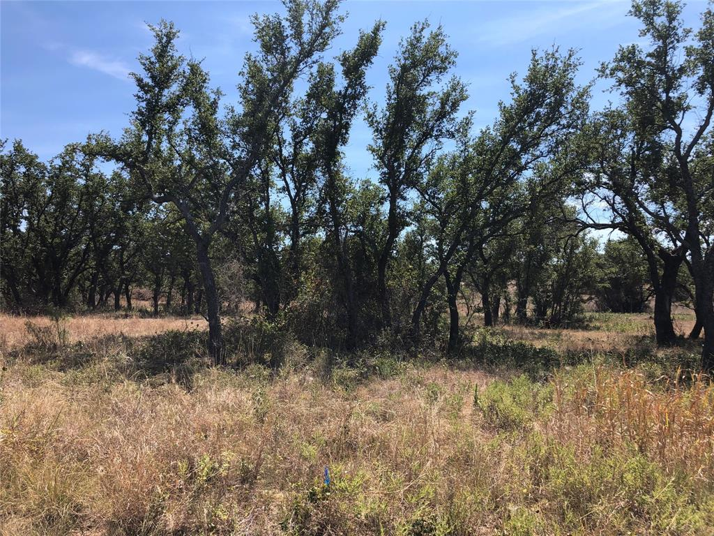 Lot1047 Long View  Drive, Brownwood, Texas 76801 - Acquisto Real Estate best frisco realtor Amy Gasperini 1031 exchange expert