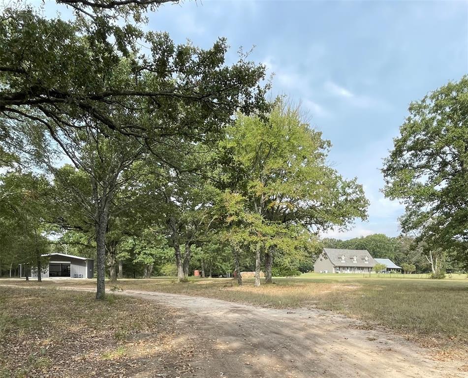 23acres Rs County Road 2610  Alba, Texas 75410 - Acquisto Real Estate best frisco realtor Amy Gasperini 1031 exchange expert