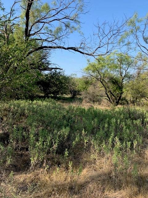 TBD Old Albany Rd  Albany, Texas 76430 - Acquisto Real Estate best frisco realtor Amy Gasperini 1031 exchange expert