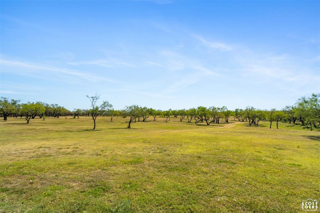 723 Fm 2926  Baird, Texas 79504 - Acquisto Real Estate best frisco realtor Amy Gasperini 1031 exchange expert