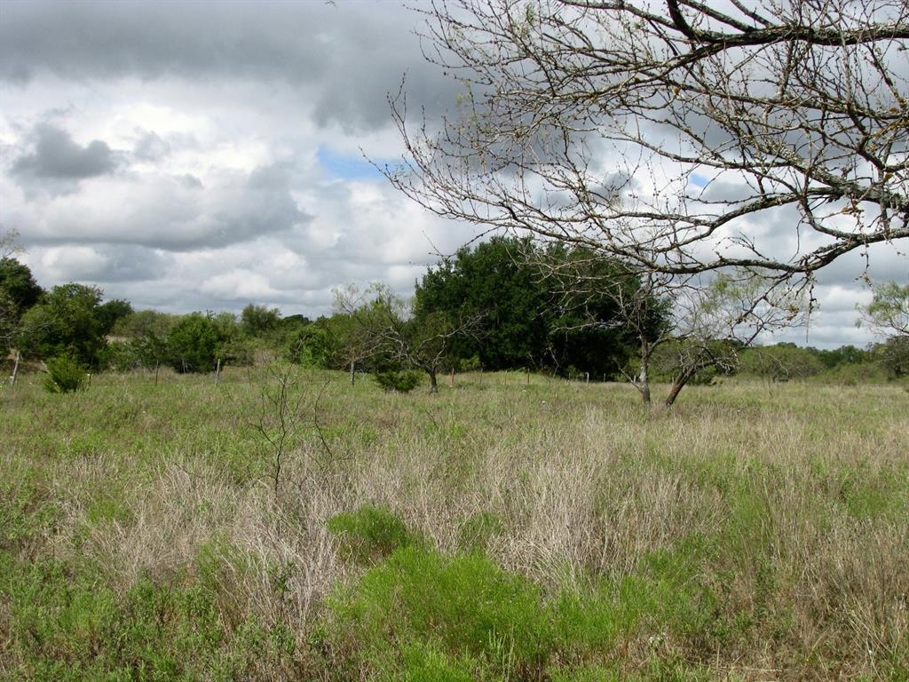 800 Self  Road, Gatesville, Texas 76528 - Acquisto Real Estate best frisco realtor Amy Gasperini 1031 exchange expert
