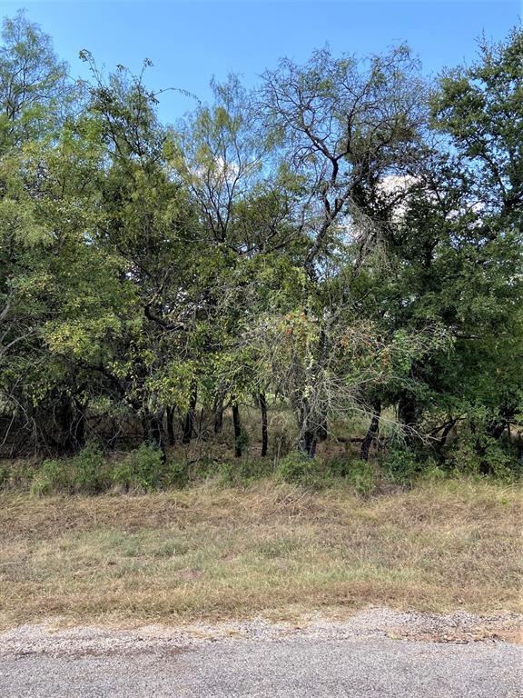 1617 Oak Springs  Drive, Whitney, Texas 76692 - Acquisto Real Estate best frisco realtor Amy Gasperini 1031 exchange expert