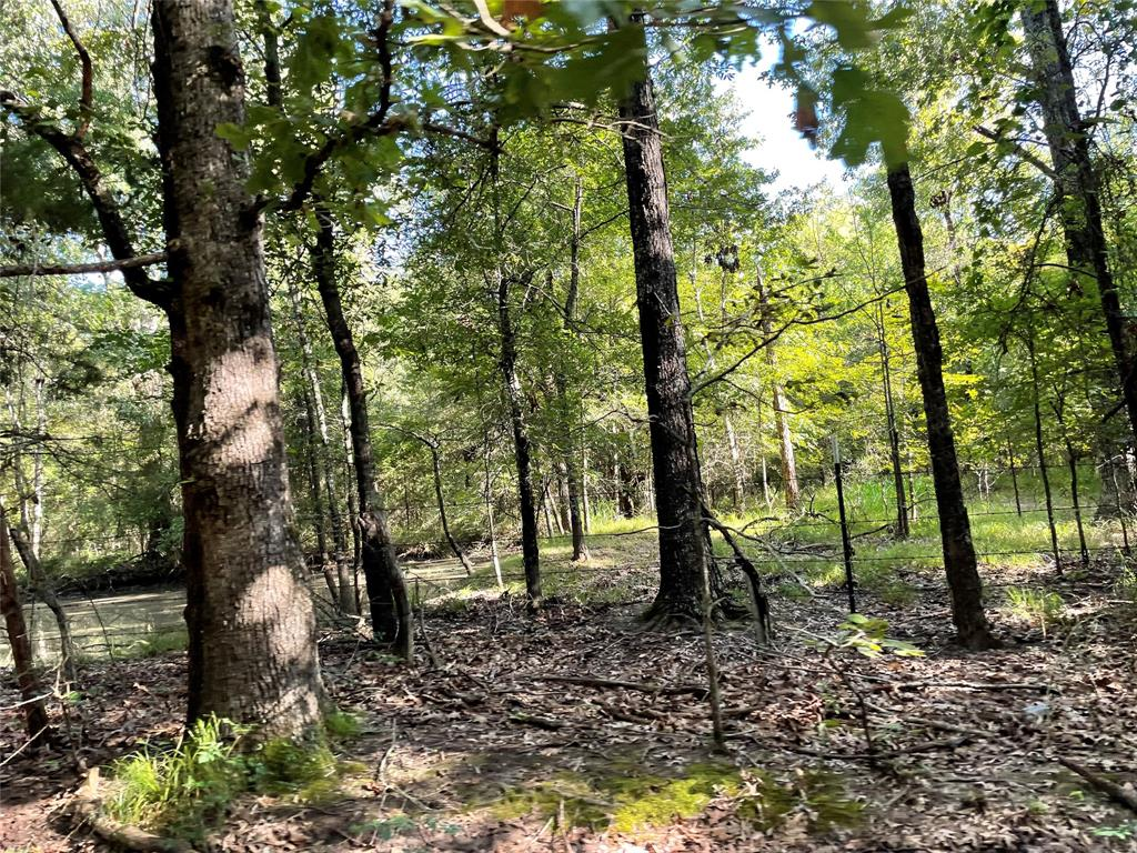 lot 19 Cuthand  19, Clarksville, Texas 75426 - Acquisto Real Estate best frisco realtor Amy Gasperini 1031 exchange expert